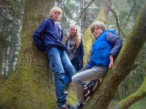 group in tree