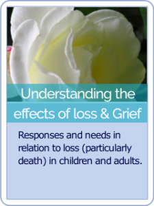 button hct 14 Understanding the effects of loss and grief