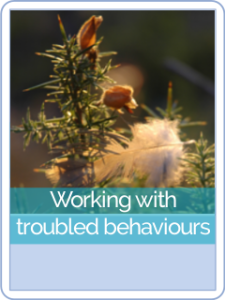 button parent hct-Working with troubled behaviours