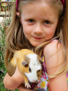 girl age six with guinea pig